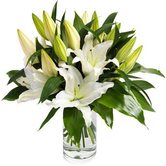 Dejlige hvide liljer