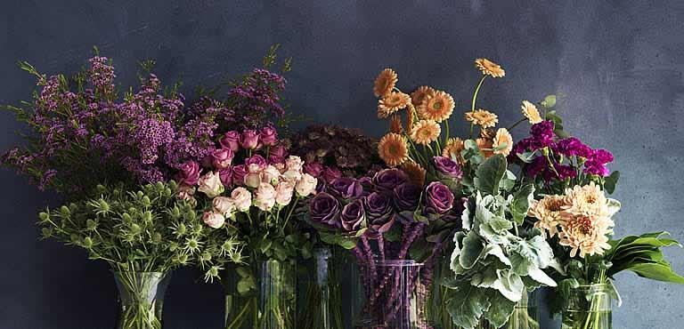 Hvad betyder blomster for dig?