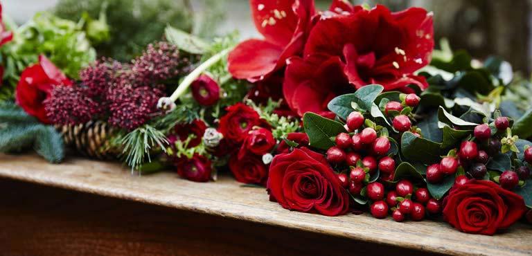 Send juleblomster til dem du holder af