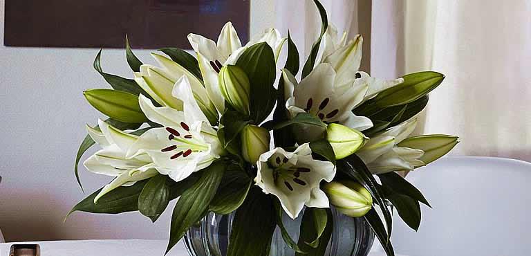 Vidunderlige liljer