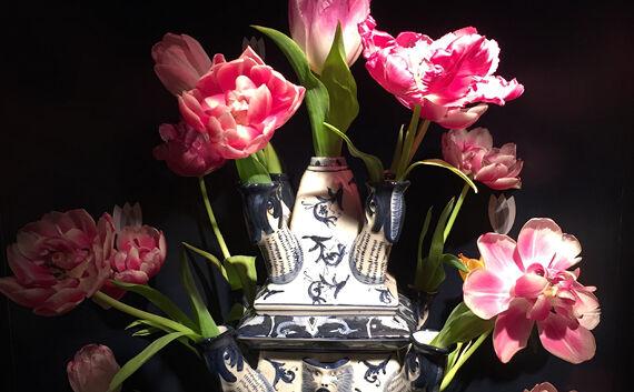 Tulipantrender