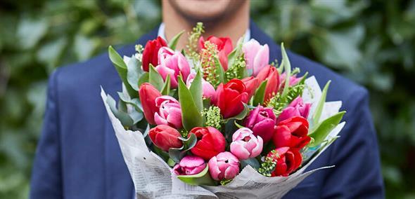 Tulipaner - tips & inspiration