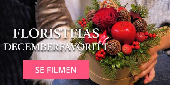 FloristFias Decemberfavorit